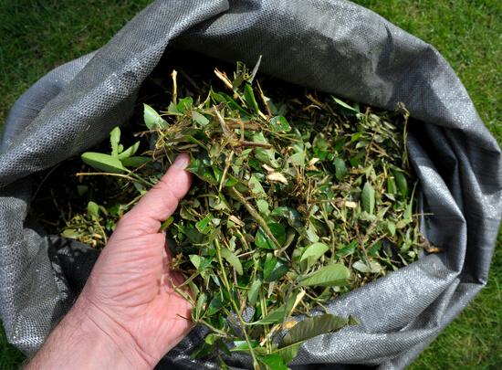 Aldi Kühlschrank Nord : Gardenline gartenhäcksler für u ac bei aldi im september