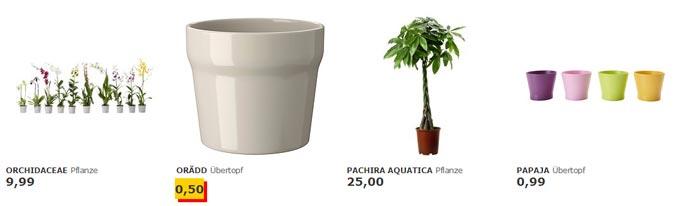 pflanzen wochen bei ikea gro e auswahl g nstige preise. Black Bedroom Furniture Sets. Home Design Ideas