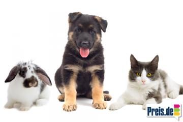 Tchibo Themenwelt Hudn Katze Kaninchen Angebote