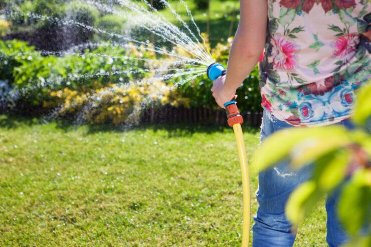 Rasenpflege 7 Mythen Tipps Was Hilft Wirklich